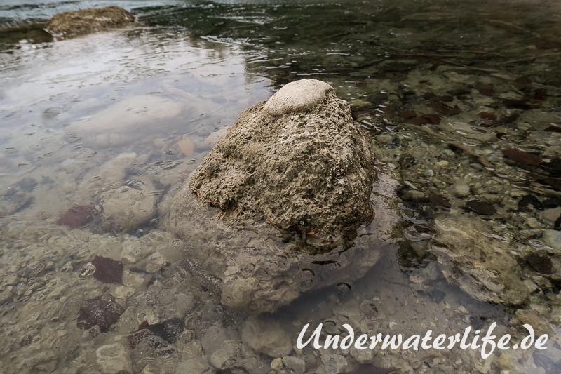 2016-02-Urisee-Eistauchen-015